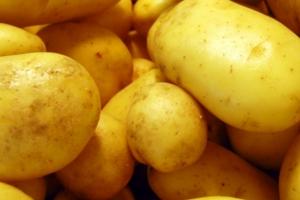 Ideias para escoar a produção de batata