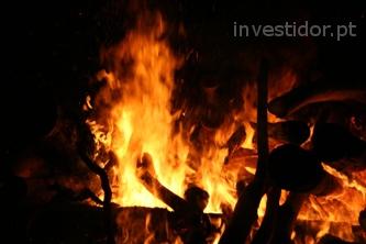 Riscos específicos do investimento em Florestação