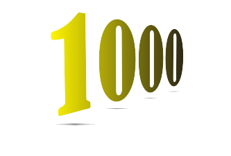 Gostava de ter 1000 visitantes diários no meu site