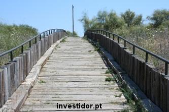 Razões para investir no longo prazo