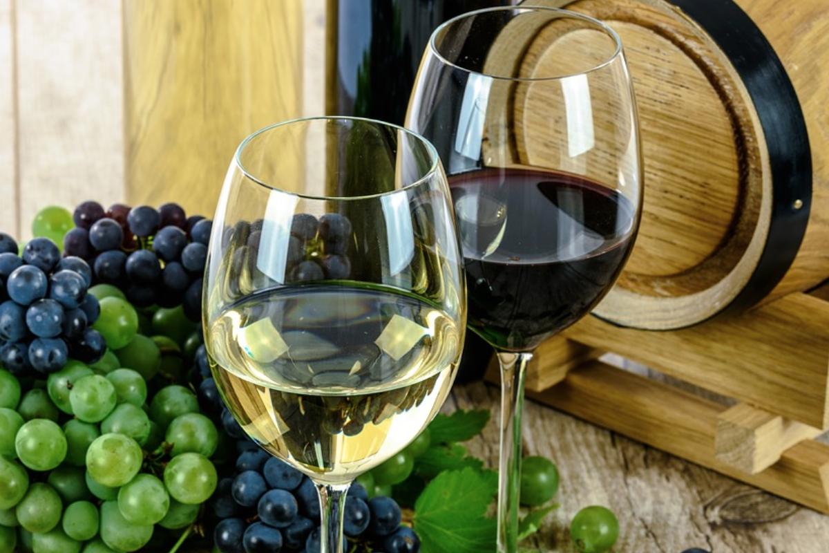Vender vinho online